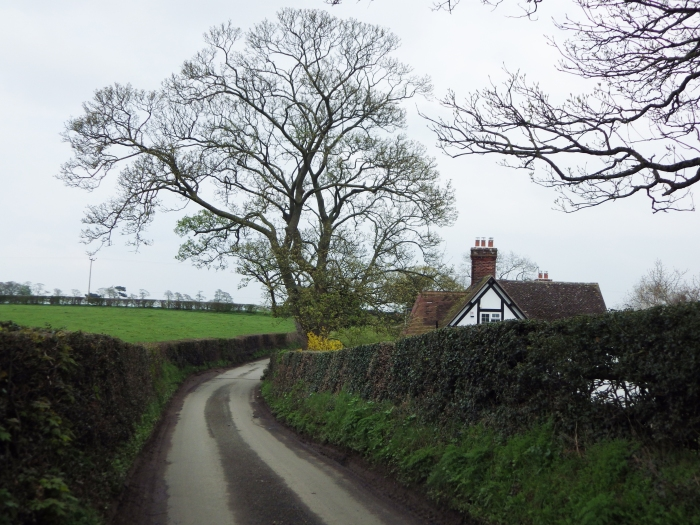 welsh lane